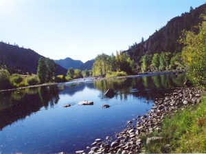 A Fly Fisher's Paradise 1