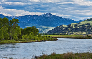 The Best States to Visit for a Fly Fishing Adventure 2