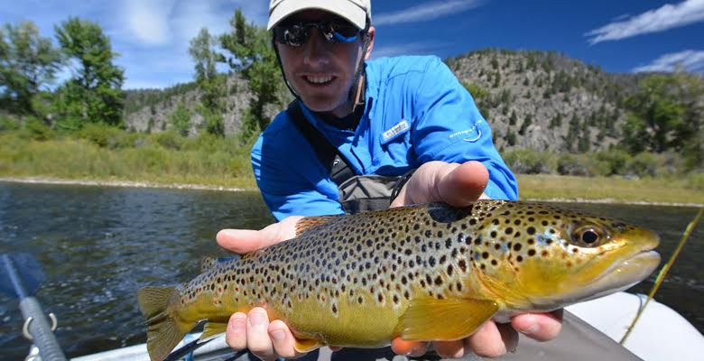 Beatiful BrownTrout on the Big Hole River