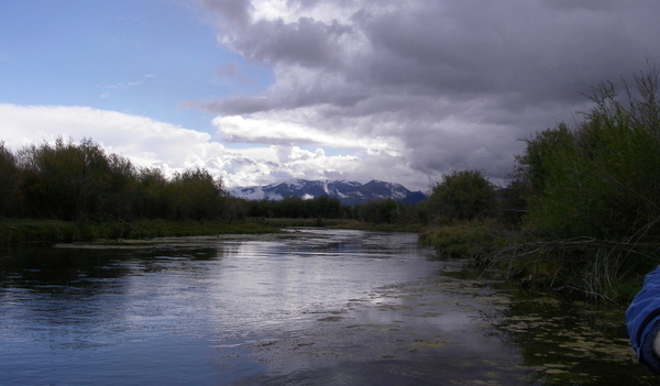 Beaverhead river on overcast day