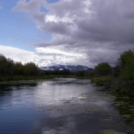 Beaverhead river on an overcast day