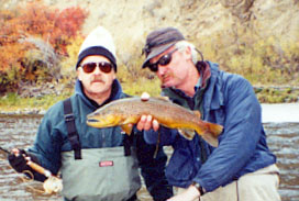 fall big hole river brown trout